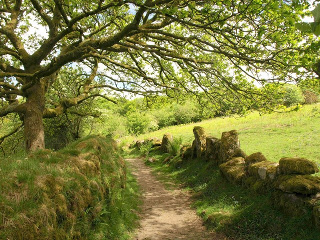 Bridleway north of Hucken Tor