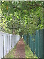 TQ4172 : Path by the London Guildhall University Recreation Ground by Mike Quinn