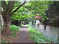 TQ4172 : Footpath by the Quaggy River between Marvels Lane and Chinbrook Road, SE12 by Mike Quinn
