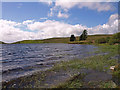 NS4952 : White Loch : Week 20