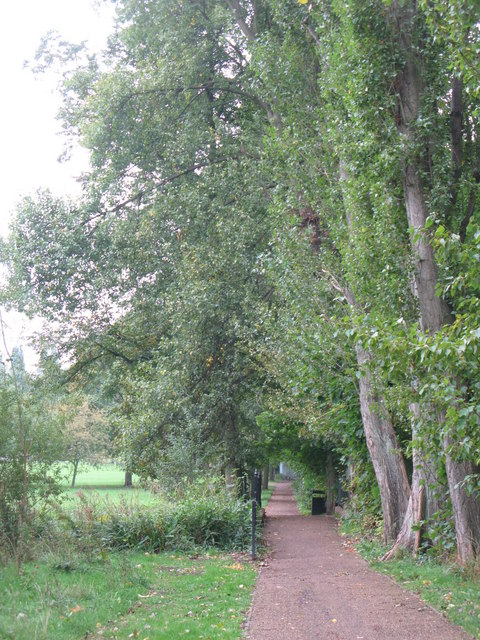 Path in Chinbrook Meadows