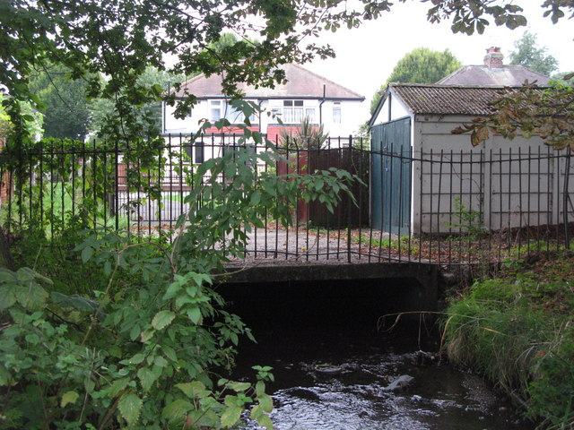 The Quaggy River aka The Chin Brook, Chinbrook Meadows (9)