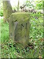 SE2118 : Boundary stone, Mouse Hole Lane by Humphrey Bolton