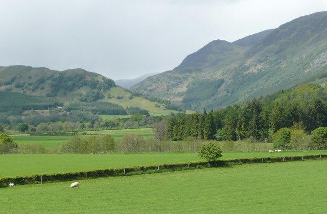 Pasture in Glen Lyon