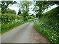 SJ4371 : Ash Hey Lane, Picton by Jeff Buck