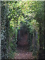 TQ4071 : Footpath east of Hall's Farm Allotments by Mike Quinn