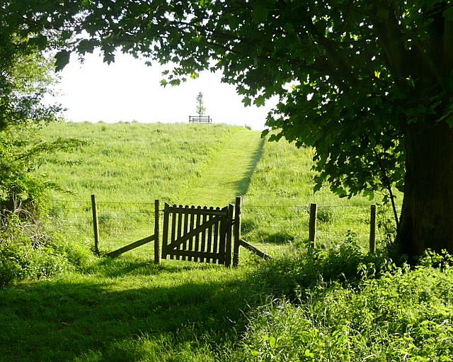 Path into Lichfield Grange