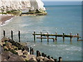 TV4898 : Gulls at Seaford Head by Oast House Archive