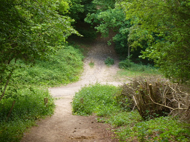 Bridleway Junction on Fetcham Downs