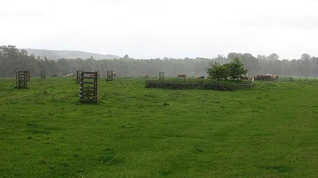 Fields, Dalkeith Park