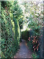 TQ4369 : Footpath between Lower Camden and Porrington Close, BR7 by Mike Quinn