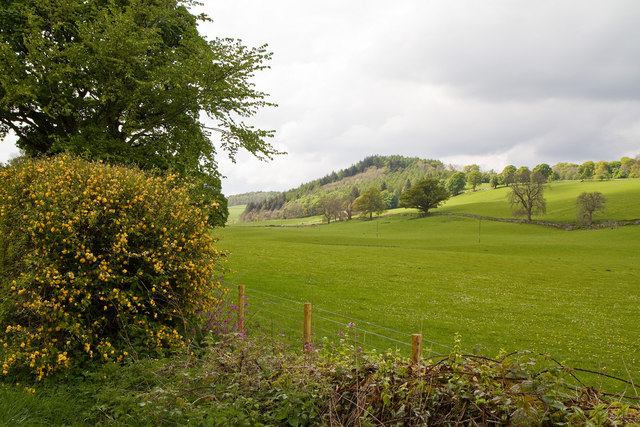 View towards Laggan Hill