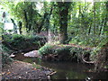 TQ4369 : The Kyd Brook, Gosshill Wood (2) by Mike Quinn