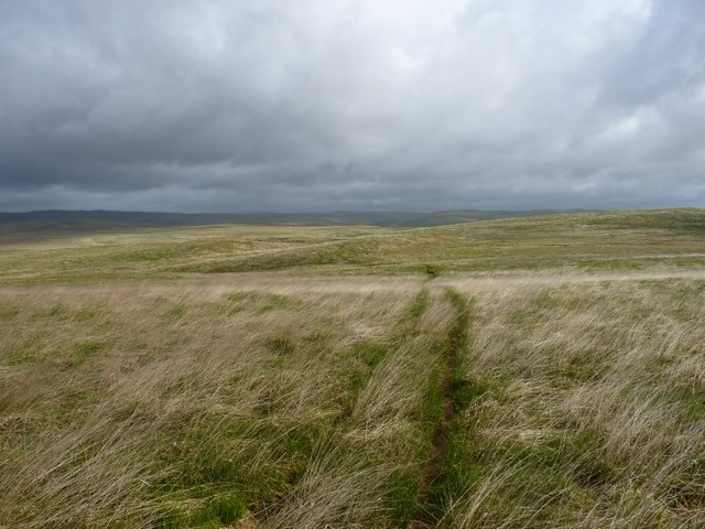ATV track heading northwards across the bogs