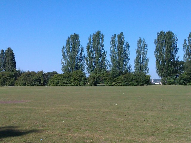 View across field, Mountsfield Park