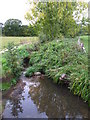 TQ4468 : The Kyd Brook south of Tongs Farm (4) by Mike Quinn