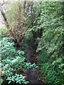 TQ4468 : The Kyd Brook west of Petts Wood (2) by Mike Quinn