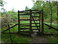 NN5823 : Gate into woodland on the Glen Ogle trail by Anthony O'Neil