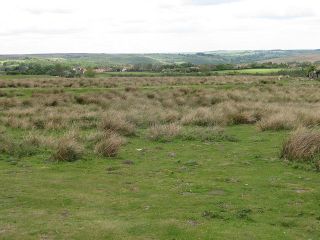 View to Goathland