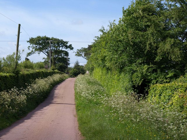 Lane to Templeton Cross