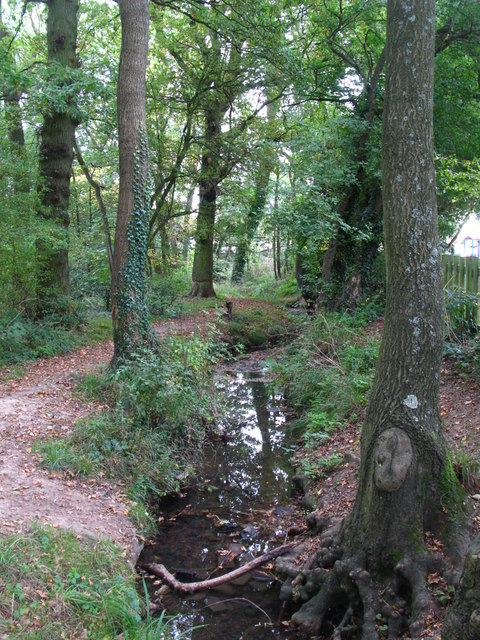 The Kyd Brook - Main Branch, south of Eynsford Close, BR5 (3)