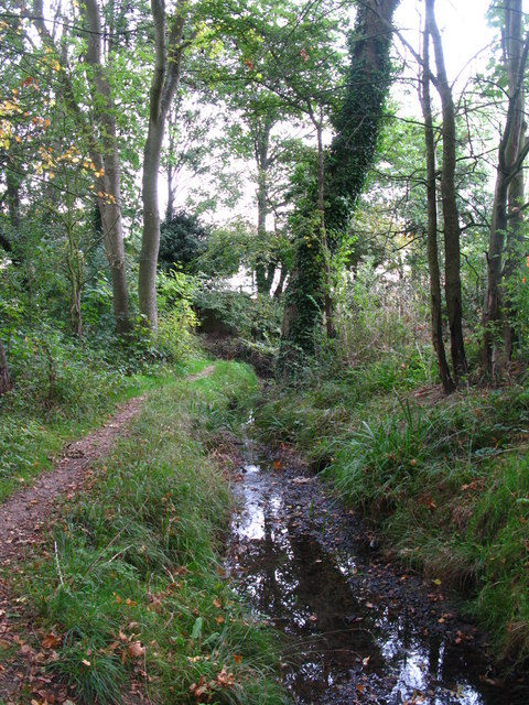 The Kyd Brook - Main Branch, south of Eynsford Close, BR5 (5)
