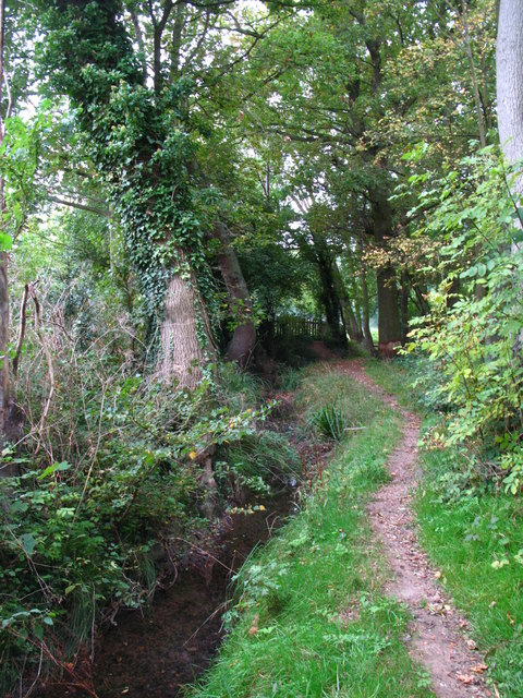 The Kyd Brook - Main Branch, south of Eynsford Close, BR5 (6)