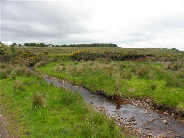Stream, Tattymoyle Middle