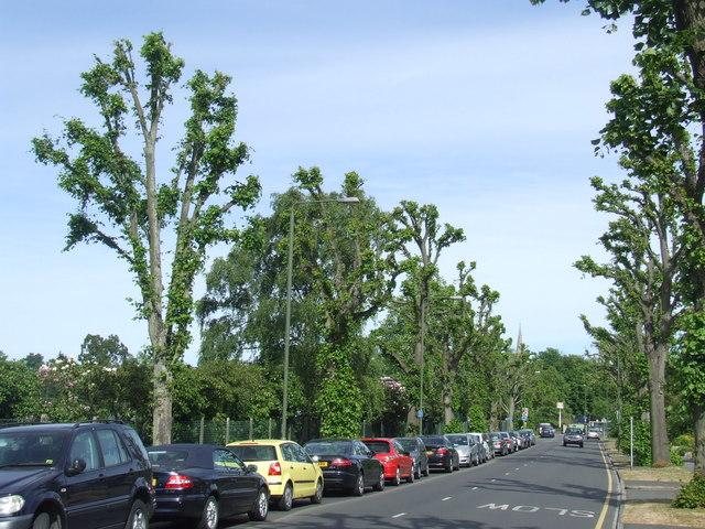 Lennard Road, Beckenham