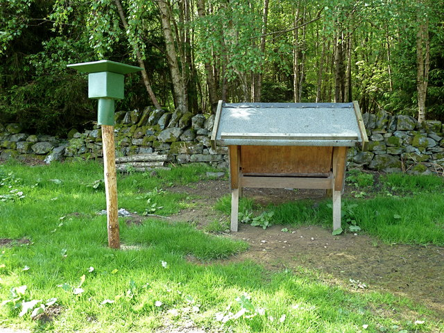 Game bird feeding trough at Dunira