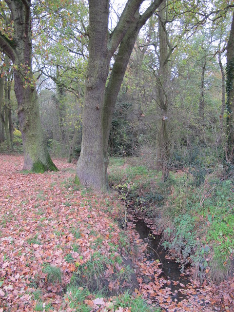The Kyd Brook - Main Branch, west of Petts Wood Recreation Ground