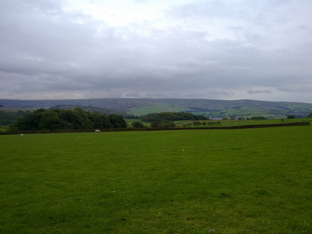 Field in Derbyshire