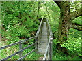 NN7623 : Royal Engineers' walkway in Laggan Wood, Comrie by Anthony O'Neil