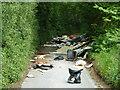 TQ3760 : Extreme fly tipping on Farleigh Court Road by Robin Webster