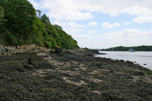 Foreshore at Antony Passage