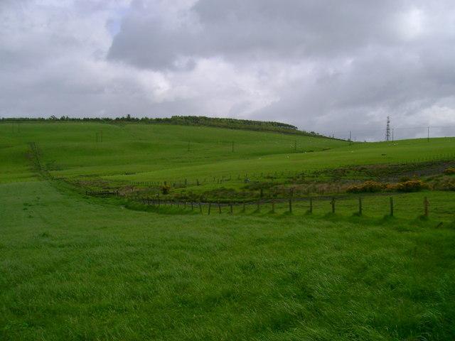Pasture on Dillar Hill
