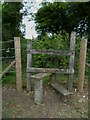 TQ2913 : Stile at crosstracks north of Pyecombe church by Shazz