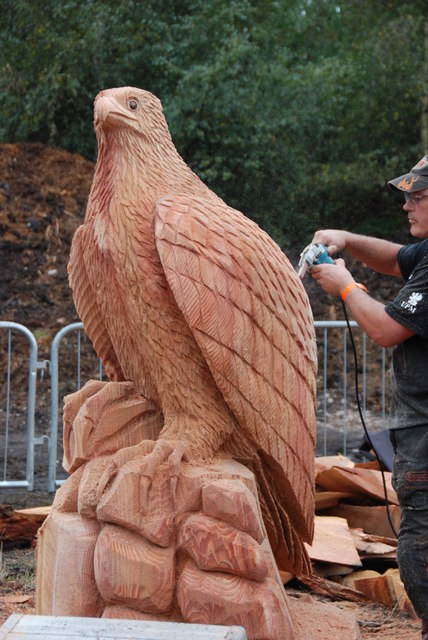 Chainsaw Carving. Cannock Chase