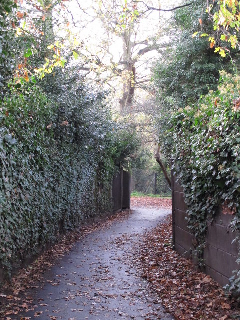 Footpath south of Shepperton Road, BR5 (3)