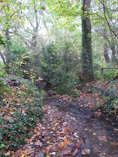 The Kyd Brook - East Branch, east of The Stables (2)