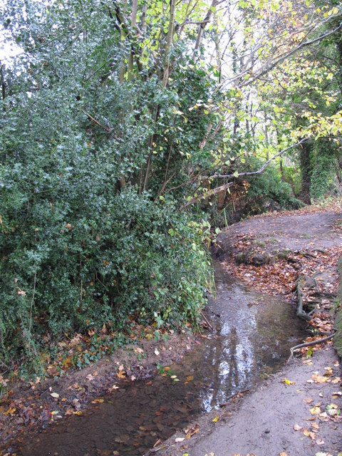 The Kyd Brook - East Branch, east of The Stables (3)