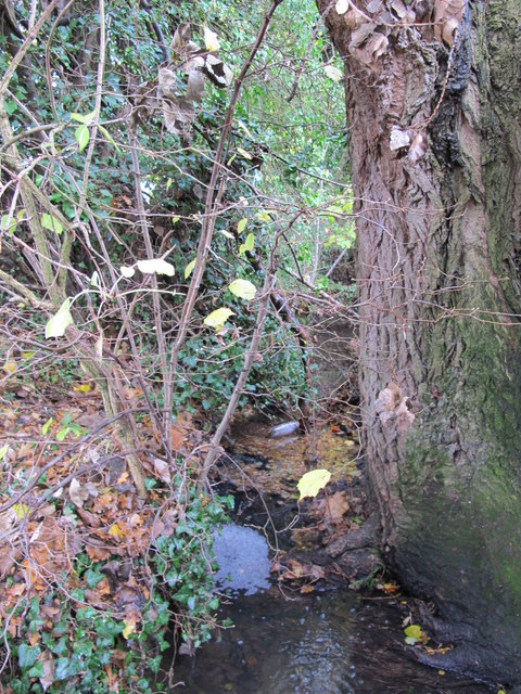 The Kyd Brook - East Branch, west of Derwent Drive, BR5