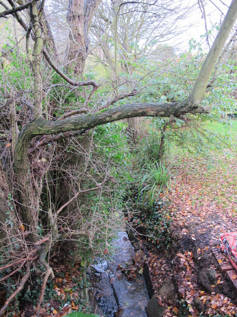 The Kyd Brook - East Branch, west of Broadcroft Road, BR5