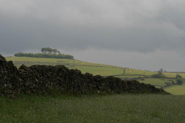 Wall near Mouldridge Lane