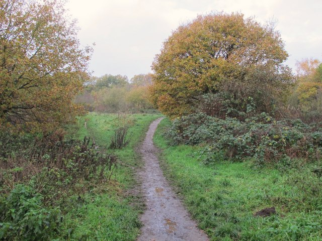 Footpath towards Sparrow Wood