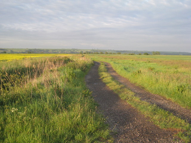 Track on Appleby Carrs