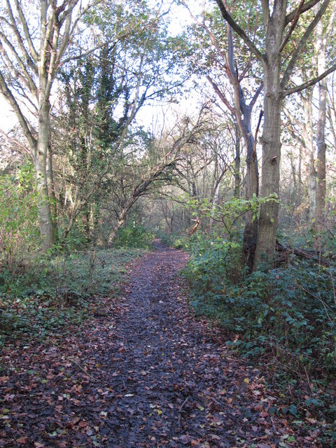 Footpath towards Roundabout Wood