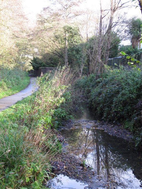 The Kyd Brook - East Branch, west of Sparrow Drive, BR5 (3)