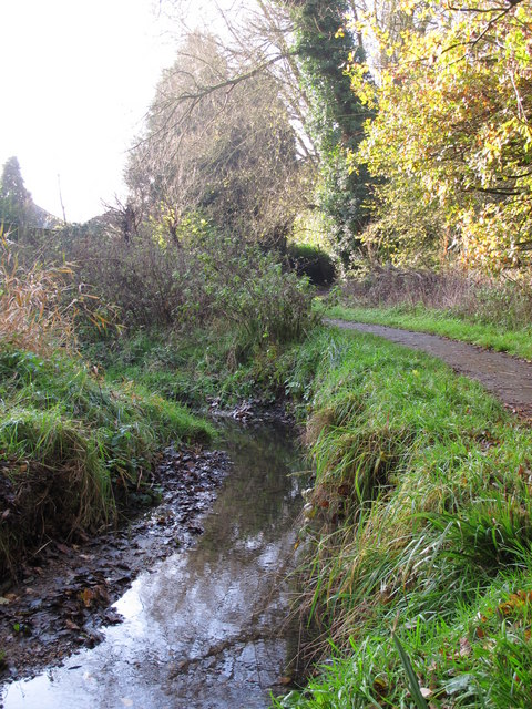 The Kyd Brook - East Branch, west of Sparrow Drive, BR5 (4)