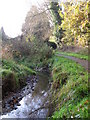 TQ4466 : The Kyd Brook - East Branch, west of Sparrow Drive, BR5 (4) by Mike Quinn
